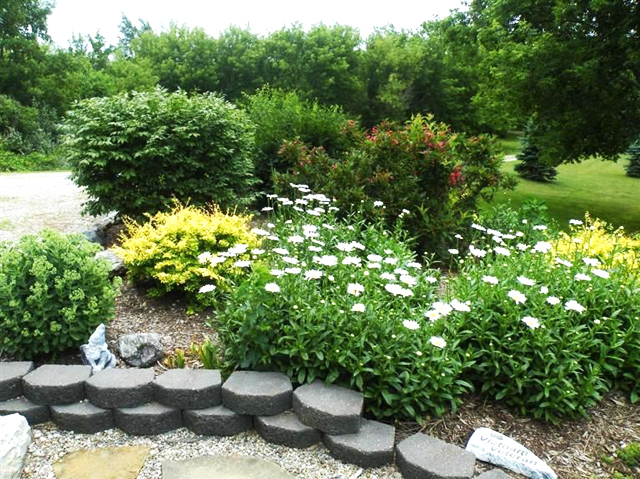 14100 Sharon Hollow Rd - Lanscaping
