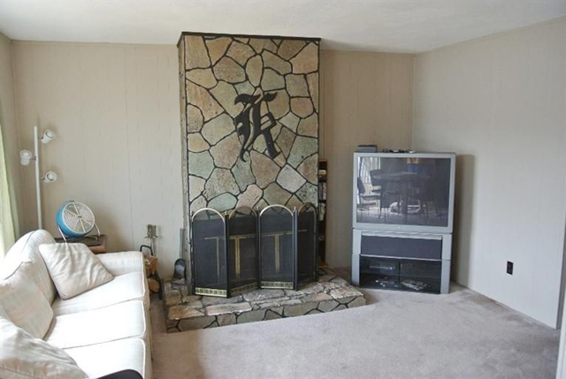 731 Crooked Lake Dr - Fireplace