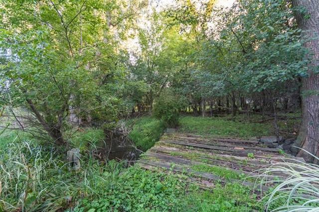 4892 Hidden Brook - Backyard Trees